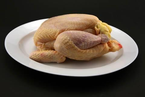 La conservazione del Pollo